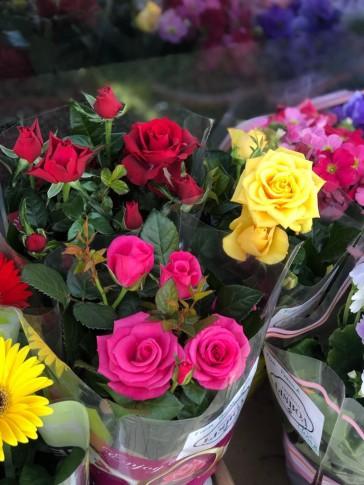 Flor, Segun Disponiblidad.