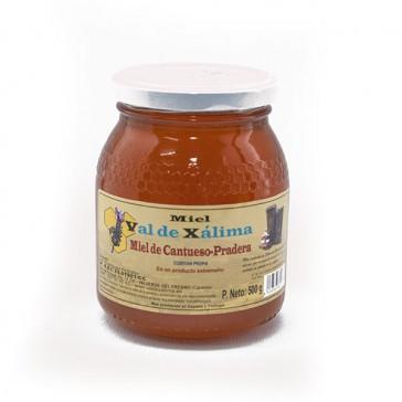 Miel Natural De Cantahueso-pradera De Val De Xalima 0,5kg